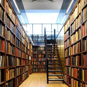 Библиотеки Балезино